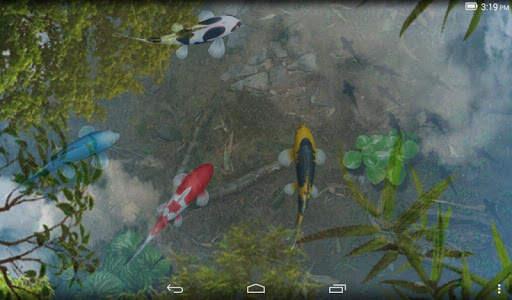 Water Garden Live Wallpaper screenshot 10