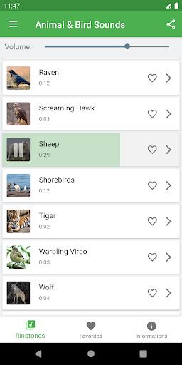Bird and Animal soundboard screenshot 8
