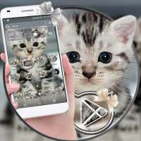 Cute Cat Launcher Theme on 9Apps