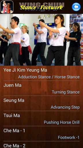 Wing Chun Kung Fu screenshot 4