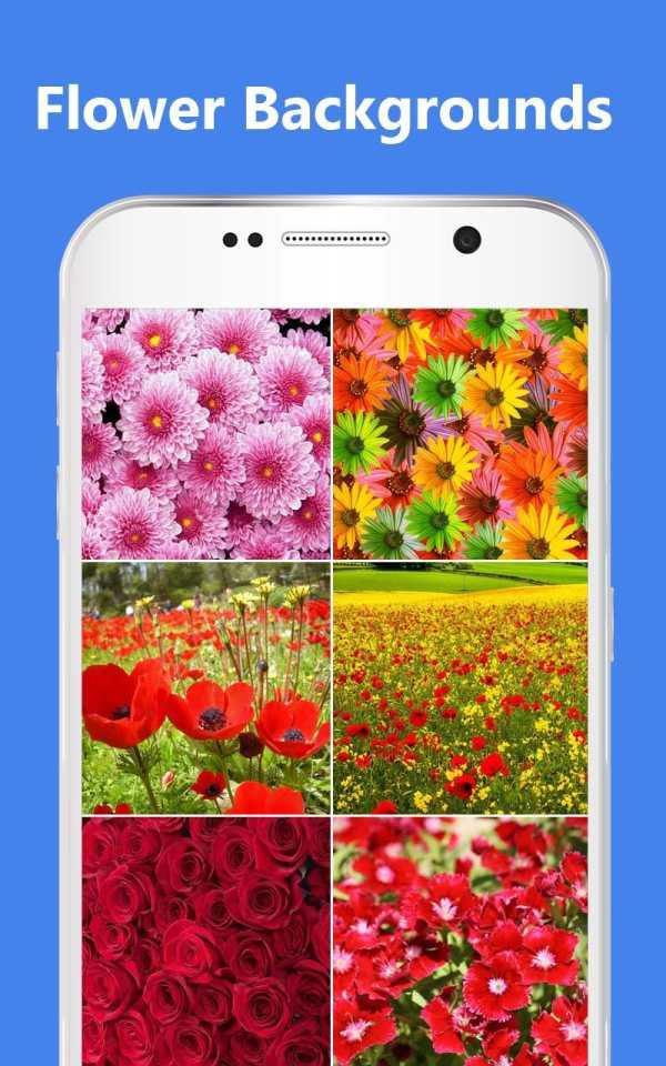 Flower Photo Frames screenshot 8