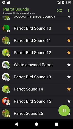 Appp.io - Parrot sounds! screenshot 3