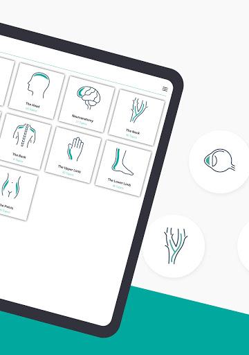 Teach Me Anatomy: 3D Human Body & Clinical Quizzes screenshot 18