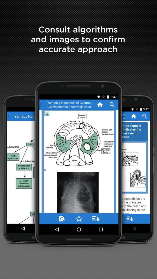 Yamada HB of Gastroenterology screenshot 2