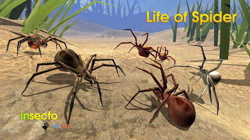 Life of Spider скриншот 14