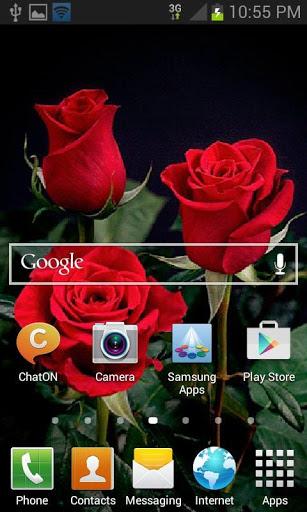 Beautiful Roses LWP screenshot 2