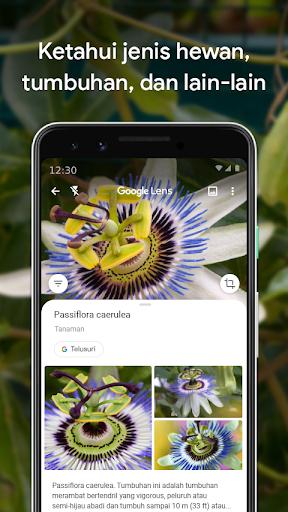 Google Lens screenshot 3