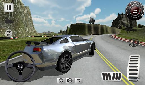 Sport Car Simulator screenshot 10