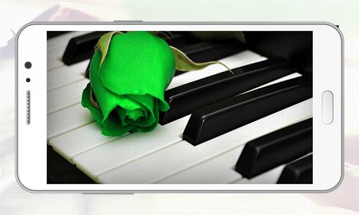 Real Piano Learning Keyboard 2020 5 تصوير الشاشة
