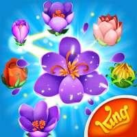 Blossom Blast Saga on APKTom