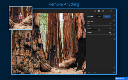 Adobe Lightroom - Photo Editor & Pro Camera screenshot 12