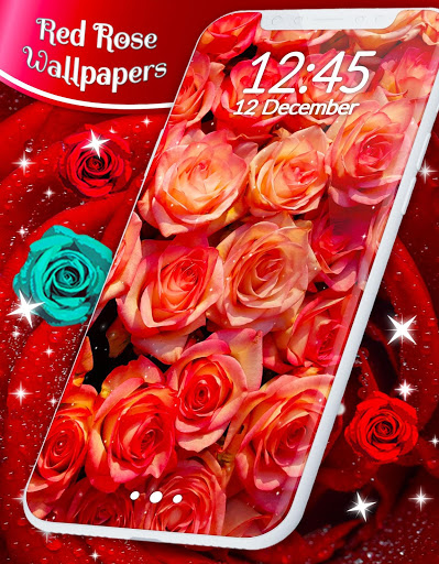 Red Rose Live Wallpaper 🌹 Flowers 4K Wallpapers скриншот 7