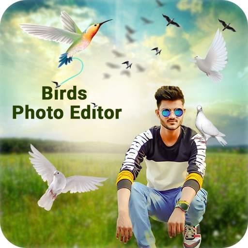 Bird Photo Editor