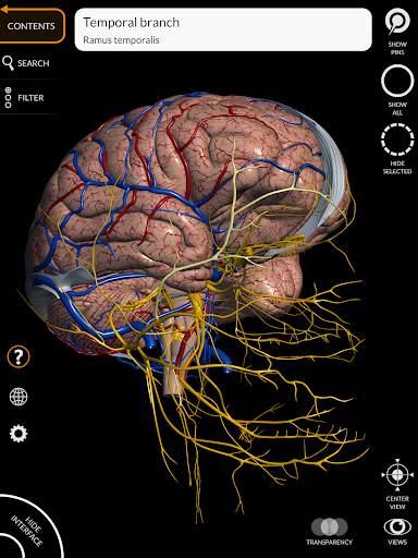 Anatomy 3D Atlas 14 تصوير الشاشة
