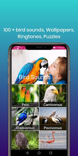 100 suara burung: nada dering, wallpaper screenshot 1
