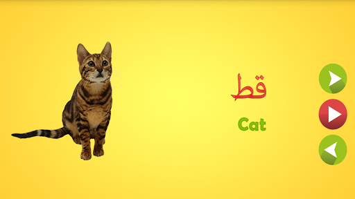 Learn Arabic Words screenshot 2