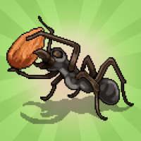 Pocket Ants: Colony Simulator on APKTom