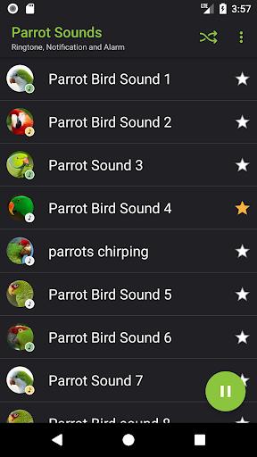 Appp.io - Parrot sounds! screenshot 2