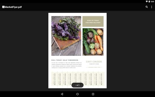 Google PDF Viewer screenshot 8