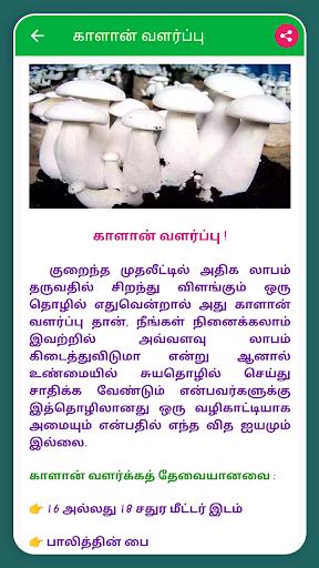 Self-Employment Ideas Tamil Business Ideas Tamil screenshot 7