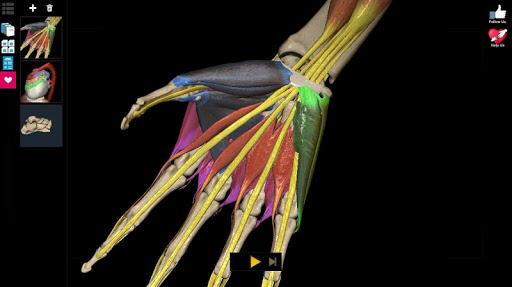 Anatomy Learning - 3D Anatomy Atlas screenshot 12