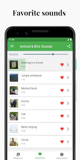 Bird and Animal soundboard screenshot 5