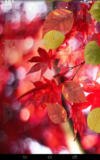 Spring Leaf wallpapers screenshot 3