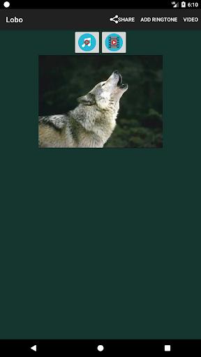 أصوات الحيوانات 17 تصوير الشاشة