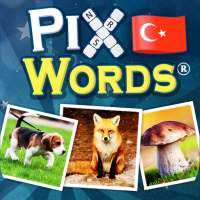 PixWords™ on 9Apps