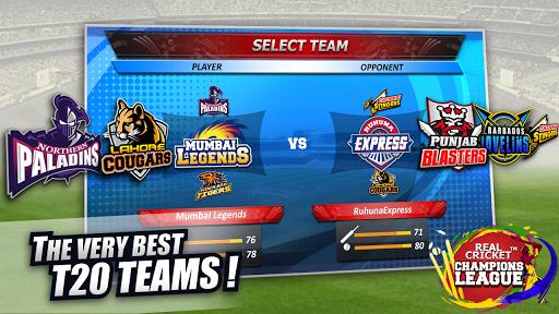 Real Cricket™ Champions League 1 تصوير الشاشة