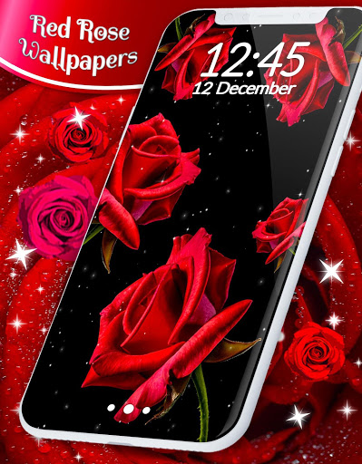 Red Rose Live Wallpaper 🌹 Flowers 4K Wallpapers скриншот 6