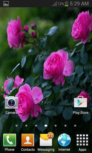 Rainy Pink Flowers LWP скриншот 3