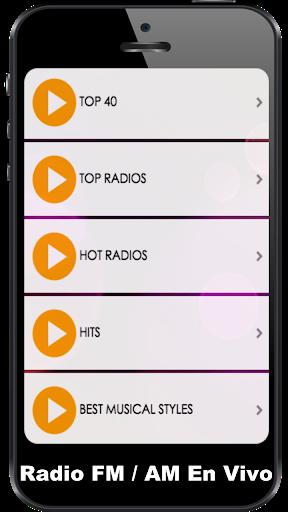 FM Radio Internet 4 تصوير الشاشة