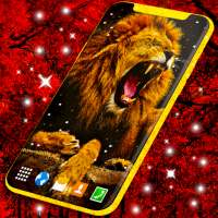 Lion Live Wallpaper 🦁 Brave Lions Wallpapers on 9Apps