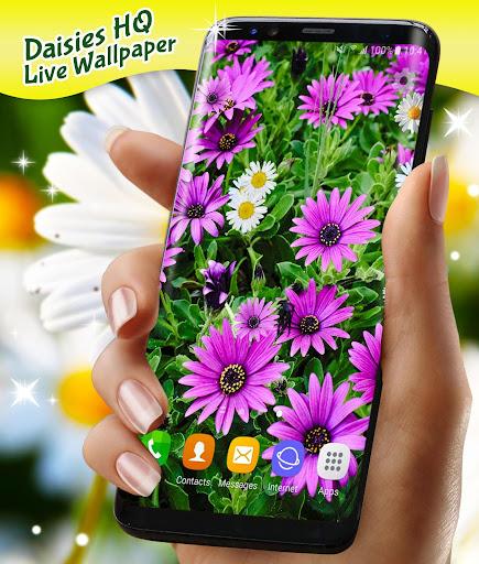 3D Daisy Live Wallpaper 🌼 Spring Field Themes screenshot 7