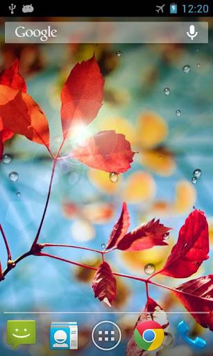 Rains Live Wallpaper 2 تصوير الشاشة