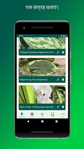 प्लांटस्नैप - पौधों, पुष्पों, पेड़ों को पहचानें स्क्रीनशॉट 4