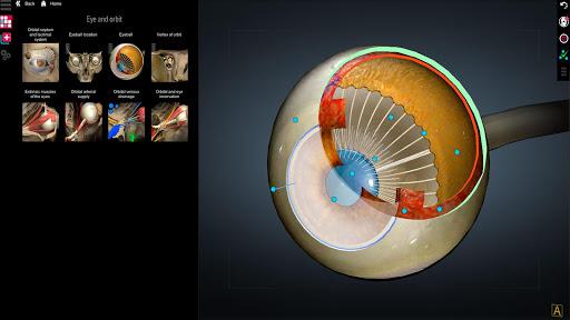 Anatomy Learning - 3D Anatomy Atlas screenshot 3