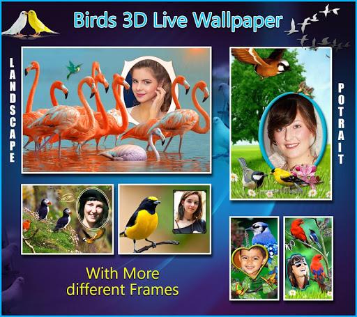 Birds 3D Live Wallpaper 8 تصوير الشاشة