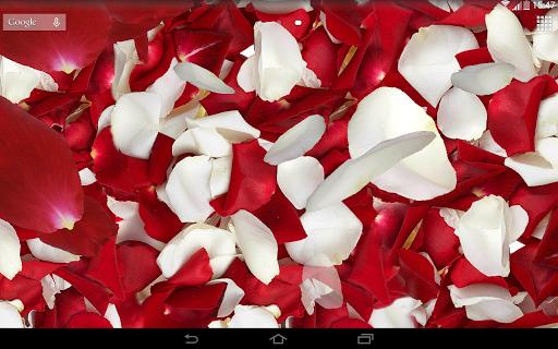 خلفيات بتلات حية ثلاثيةأبعاد 8 تصوير الشاشة