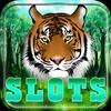 Tiger Spin Slot أيقونة