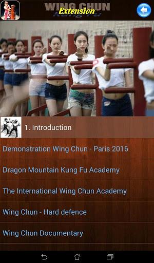 Wing Chun Kung Fu screenshot 9