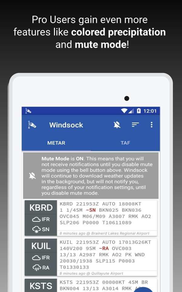 Windsock - Automatic METAR/TAF screenshot 18