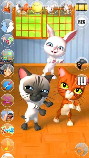 Talking 3 Friends Cats & Bunny screenshot 3