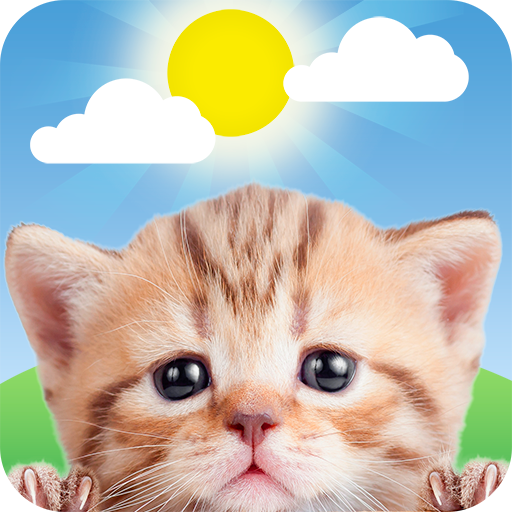 Weather Kitty - App & Widget Weather Forecast icon