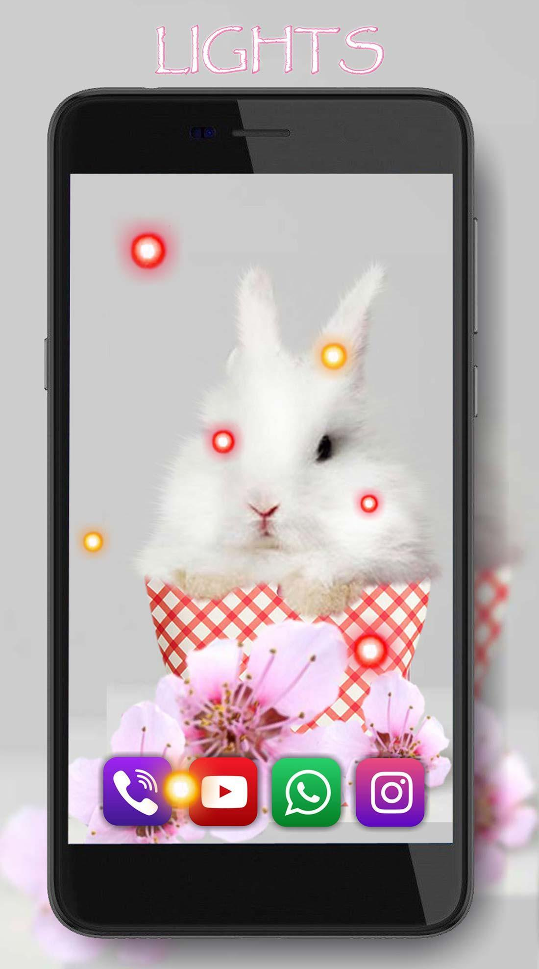 Funny Bunnies live wallpaper 4 تصوير الشاشة