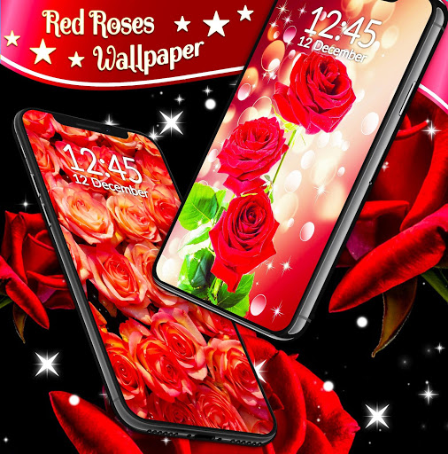 Red Rose Live Wallpaper 🌹 Flowers 4K Wallpapers скриншот 3