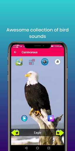 100 suara burung: nada dering, wallpaper screenshot 15