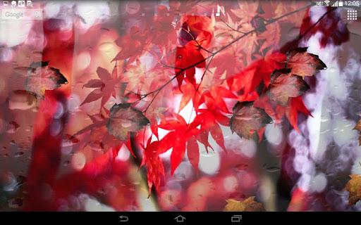 Spring Leaf wallpapers screenshot 6