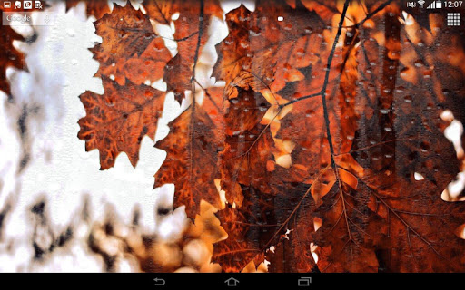 Spring Leaf wallpapers screenshot 5